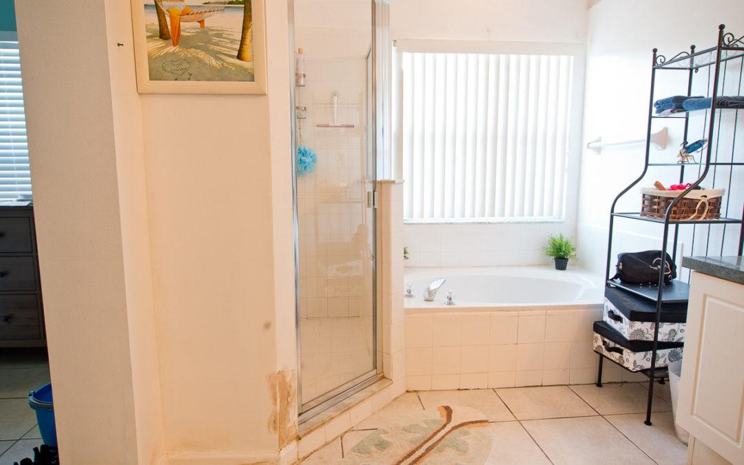 Bathroom Renovation: Part 1